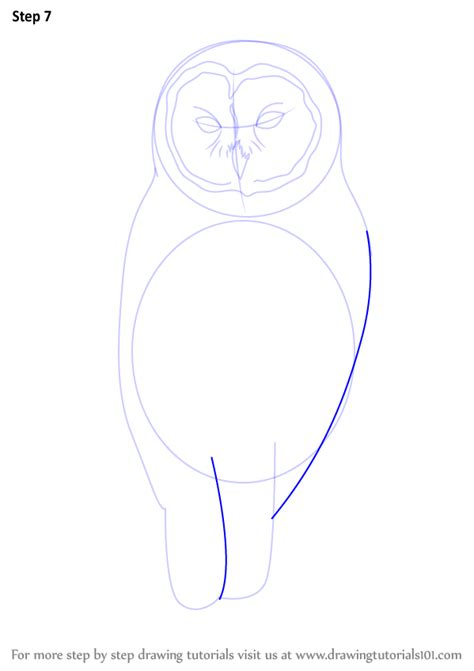 how to draw doodle owl learn how to draw a barred owl birds step by step