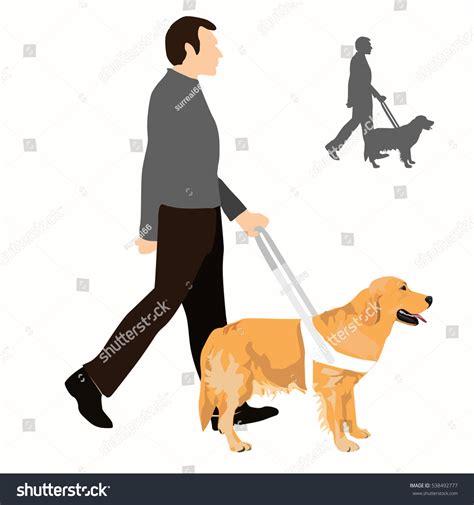golden retriever blind guide guide vector illustration assistance stock vector 538492777
