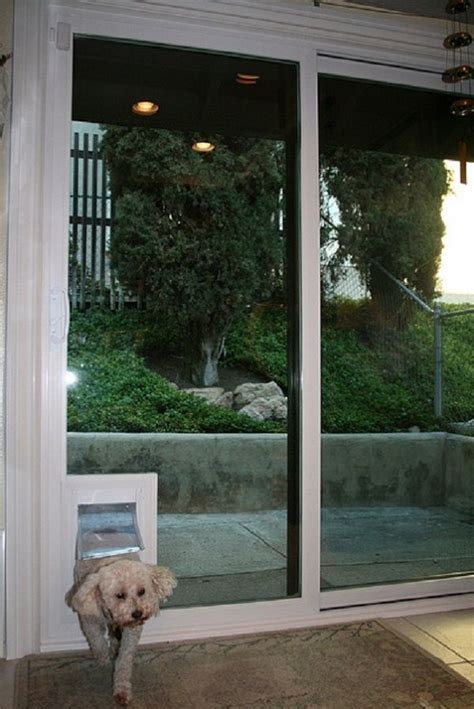 Glass Doggie Doors Best 25 Sliding Glass Door Ideas On Patio Door Patio Doors With Blinds And