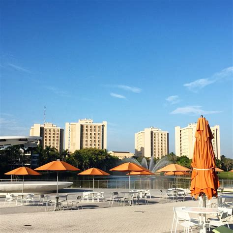 Of Miami Mba Reviews by Of Miami 66 Photos 36 Reviews Colleges