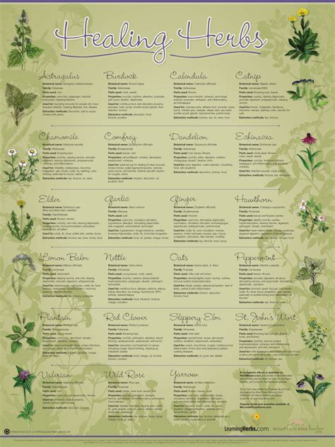herb chart amusing little tidbits on pinterest the princess bride