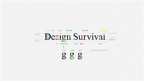 make a typography poster for typography graphics survival anatomy and typography