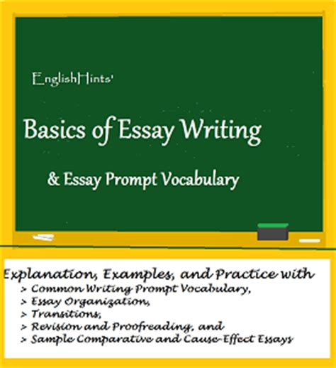 The Basics Of Essay Writing by Academic Vocabulary Worksheets