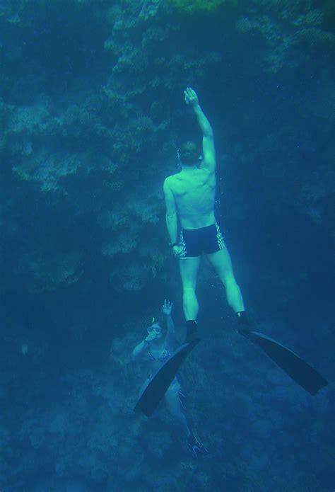 blue dive sea diving scuba diving blue