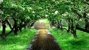 song from a secret garden midi