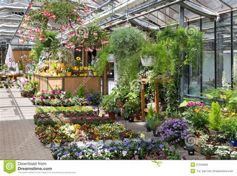 Garden Center Flowers Garden Center Selling Plants In A Greenhouse Stock Photo