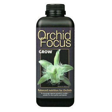 Sprei Grow Triangle orchid focus grow wholesale flowers florist supplies uk