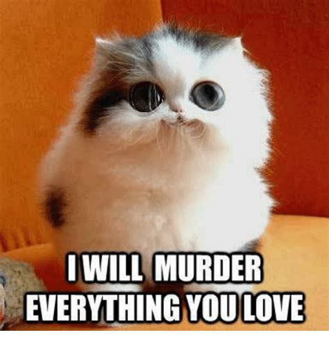 Will Meme - i will murder everything youlove grumpy cat meme on sizzle