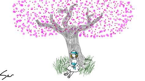 Step Weather A Day cherry blossom tree the at the base is from my