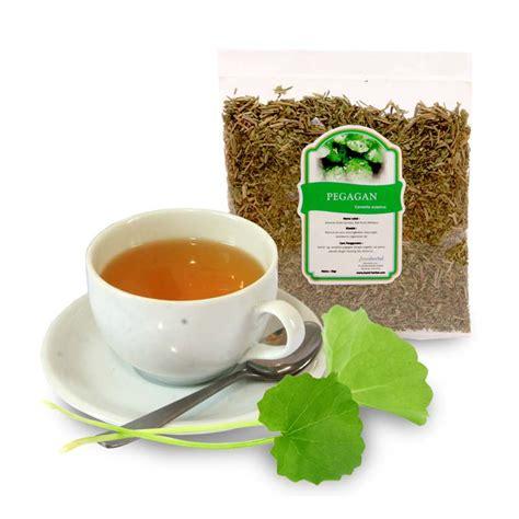 Daun Pegagan Kering Nutrisi Penambah Daya Ingat pangan fungsional bumi herbal dago