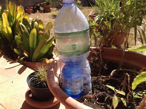 quando innaffiare il giardino 2 modi per auto innaffiare gratis le piante 2 self