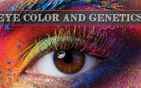 genetics of eye color eye color genetics calhoun vision