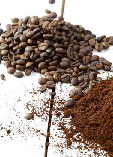 Pupuk Kalsium Bubuk 3 bahan pupuk alami dari dapur anda