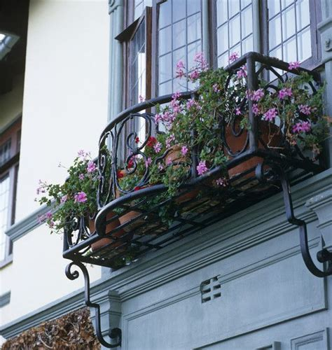 wrought iron window boxes best 25 wrought iron window boxes ideas on