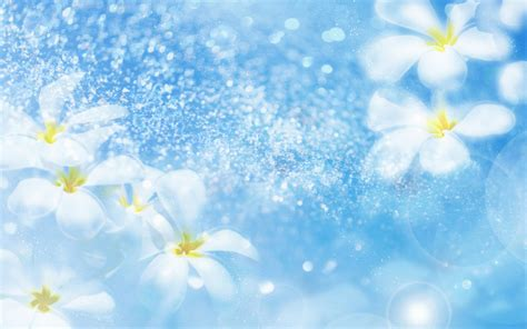 wallpaper free use some nice wallpapers free to download for personal use
