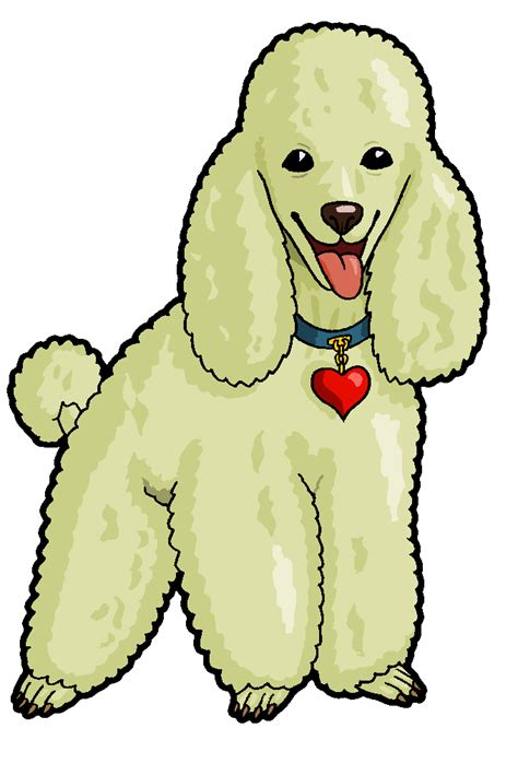 how to a poodle how to draw a poodle cliparts co