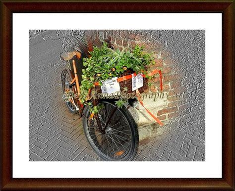 Sepeda Keranjang Untuk Wanita keranjang sepeda unik dan cantik oleh della