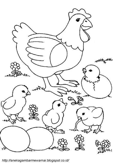 gambar untuk mewarnai anak tk 179 best images about gambar kelinci on pinterest adult
