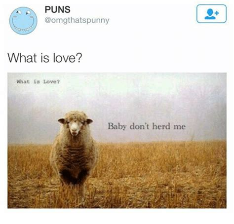 What Is Love Meme - puns hats punny what is love what is love baby don t