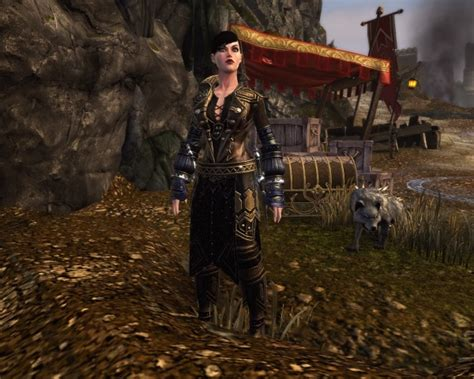 neverwinter companions neverwinter review best f2p free online mmorpg and mmo