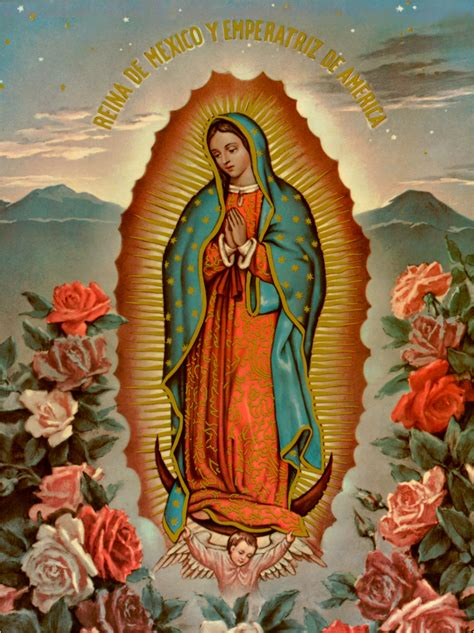 feast   lady  guadalupe   gallery