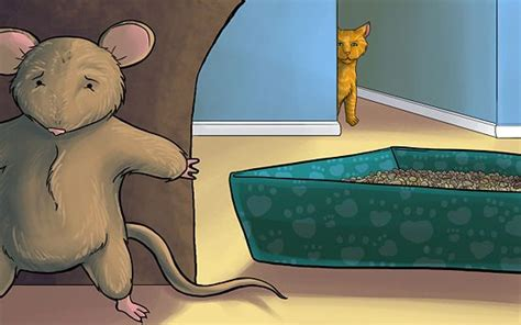 How To Get Rid Of Rats In Shed by 1000 Images About Ways To Get Rid Of Mice Naturally On