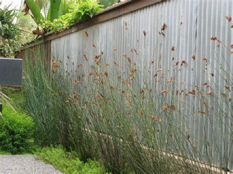 giardino semplice giardini idee mozzafiato per un area verde da sogno