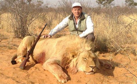 imagenes leones cazando otro cazador de animales pero argentino taringa