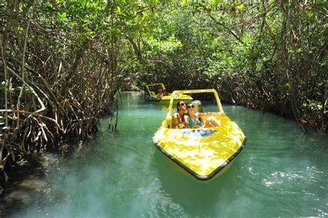 lada romantica jungle tour la mejor expedici 243 n en manglares de canc 250 n