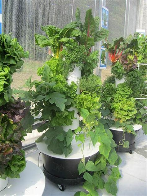Juice Plus Vertical Garden 1000 Ideas About Tower Garden On Planting