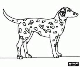 spotted dalmatian dog coloring printable game