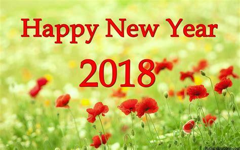 new year flower fair 2018 happy new year 2018 flowers images flowers ideas