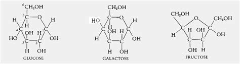 carbohydrates molecular formula the and science of health fitness