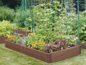 budget veggie garden ideas   food small
