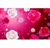 Images Of Wallpaper  Full HD 1080p Wonderful High