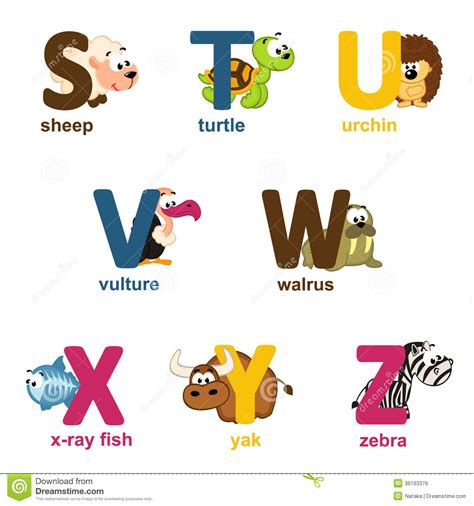 animal alphabet u stock photo image 8440040 alphabet animals from s to z royalty free stock image