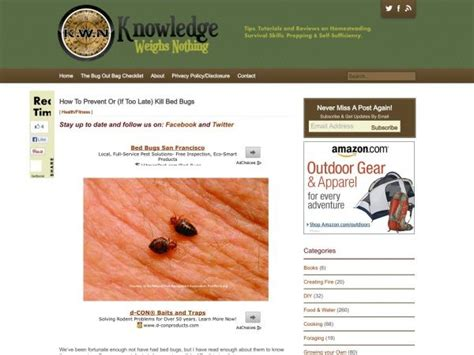 bed bugs en español m 225 s de 1000 ideas sobre remedios de chinches en pinterest