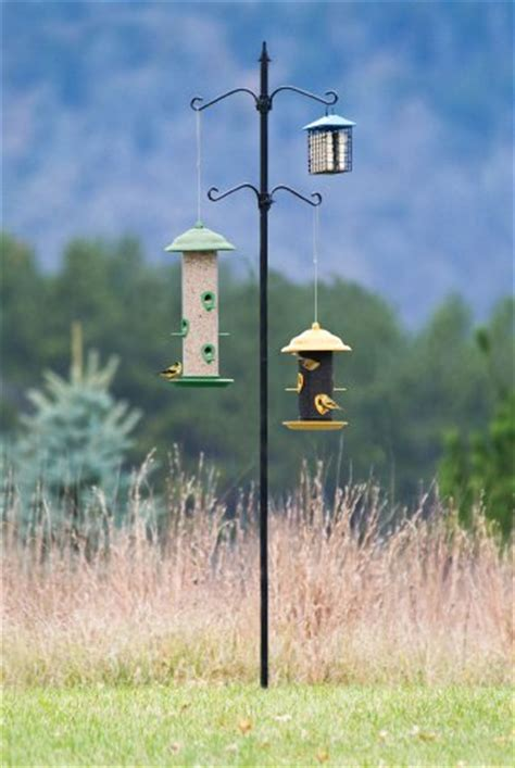 bird feeder pole system stand station four hook hanger
