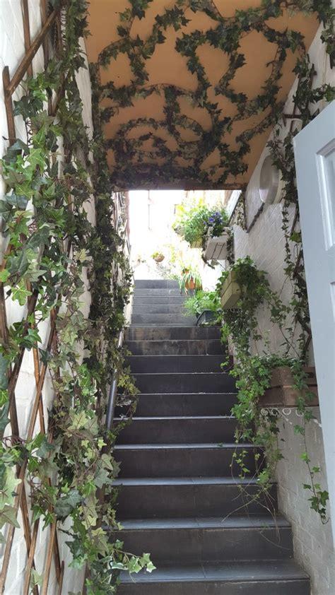 claphams secret garden  pop   visit  summer