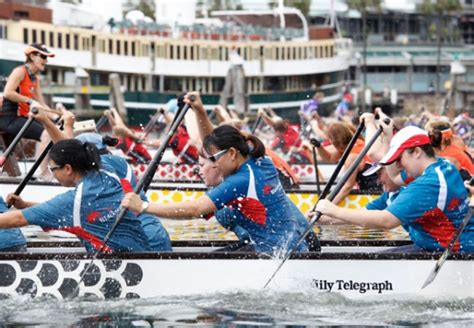 dragon boat racing chinese new year sydney chinese new year festival 2013 sydney