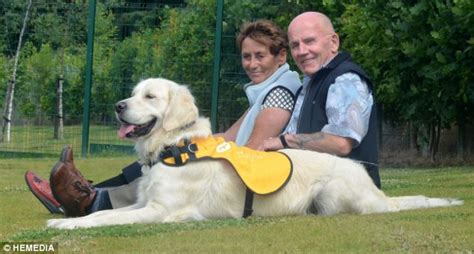 do dogs get dementia the dementia dogs that get their owners out of bed keep them active and bring them
