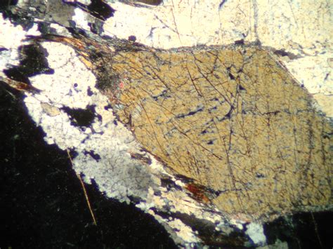 andalusite thin section andalusite