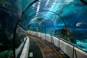 l aquarium dayviews a place for your photos a place for your memories