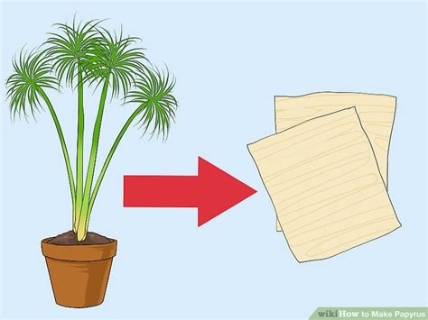 How To Make Paper Out Of Papyrus - how to make papyrus with pictures wikihow