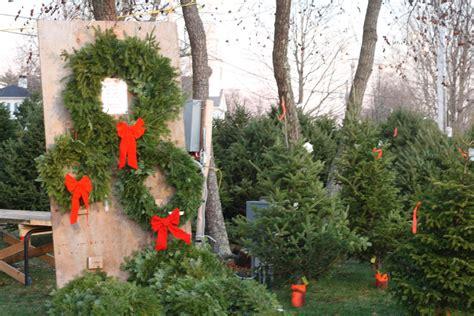 28 best christmas tree lot ideas diy mini christmas