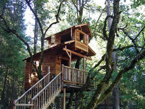 simple tree house designs kontemplasi singkat rumah twisted thoughts
