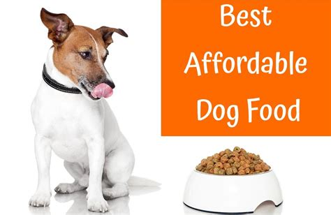 best puppy food a comprehensive guide of best affordable food in 2017 us bones