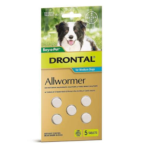 best dewormer for dogs drontal all wormer for medium dogs