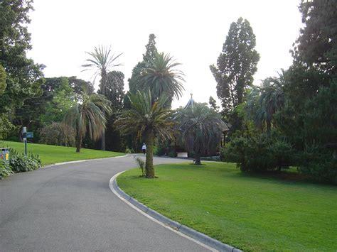 Royal Botanical Gardens Australia Australia Images Royal Botanical Gardens Hd Wallpaper And Background Photos 537111