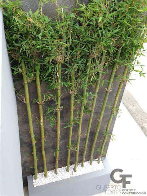 17 best images about plantas on pinterest los gatos 17 ideas para que tu jard 237 n sea como de hotel moderno y